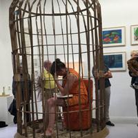 vogelkooi | WG kunst | Femke van Heerikhuizen